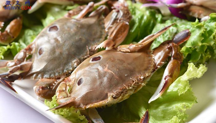 梭子蟹是不是凉性食物