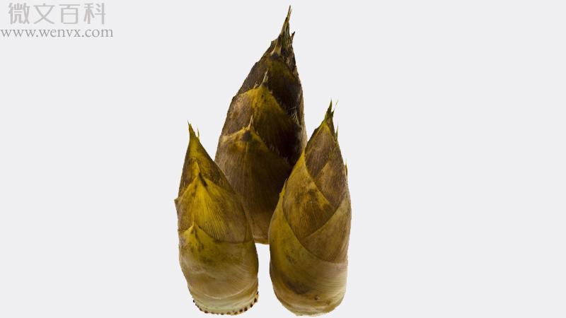 广东酸笋的腌制方法 第3张