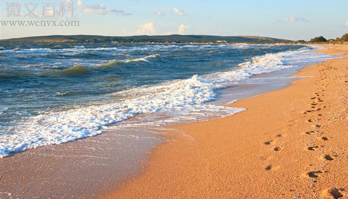 赤潮多发的海域位于