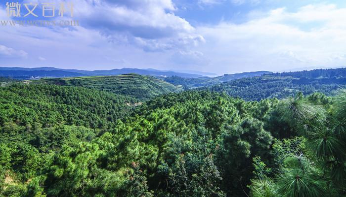 1956年我国建立的第1个自然保护区是